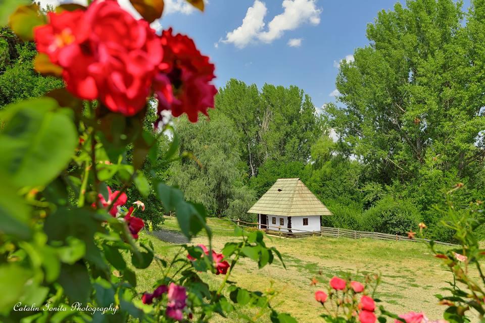 Esența Bucovinei într-un singur sat